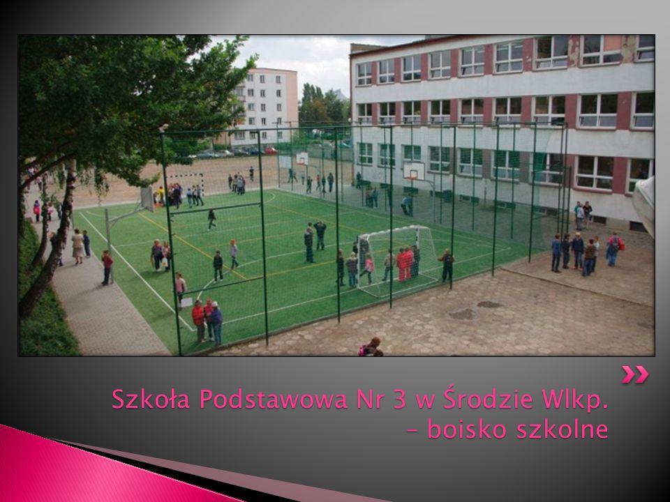 Szkoła Podstawowa Nr 3 w Środzie Wlkp. – boisko szkolne