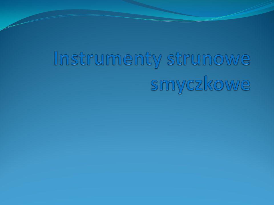 Instrumenty strunowe smyczkowe