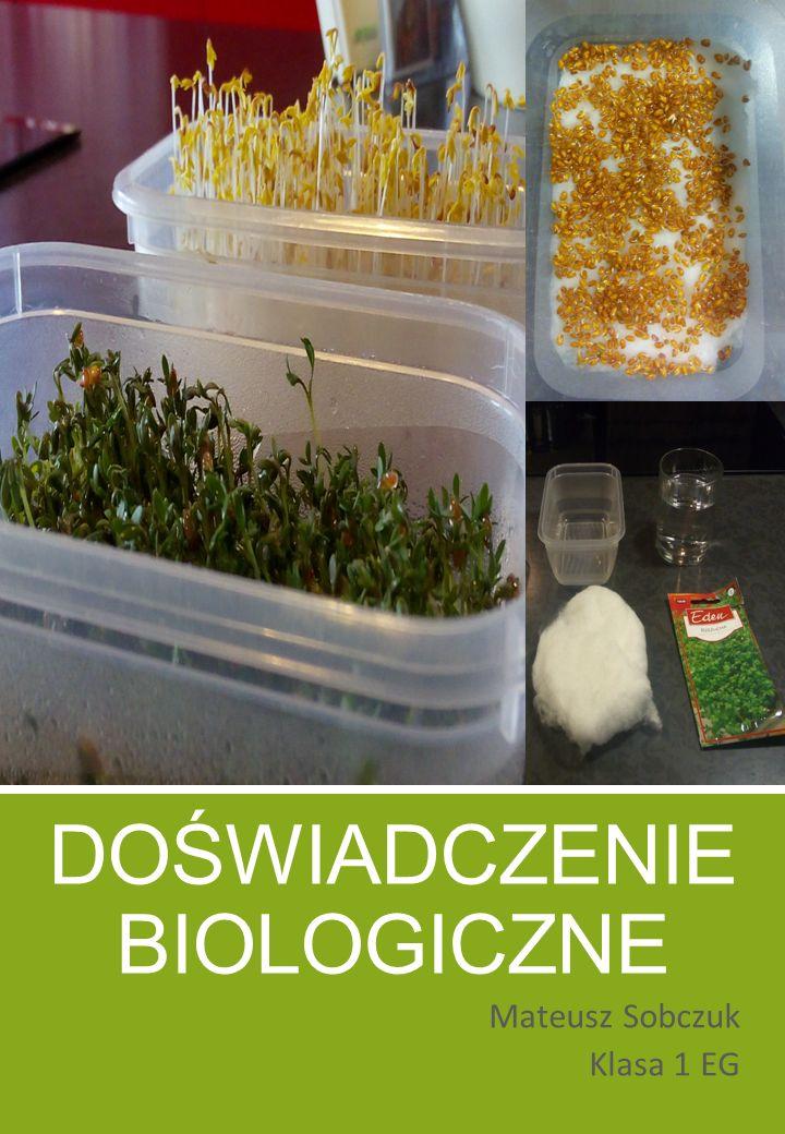 Doświadczenie Biologiczne