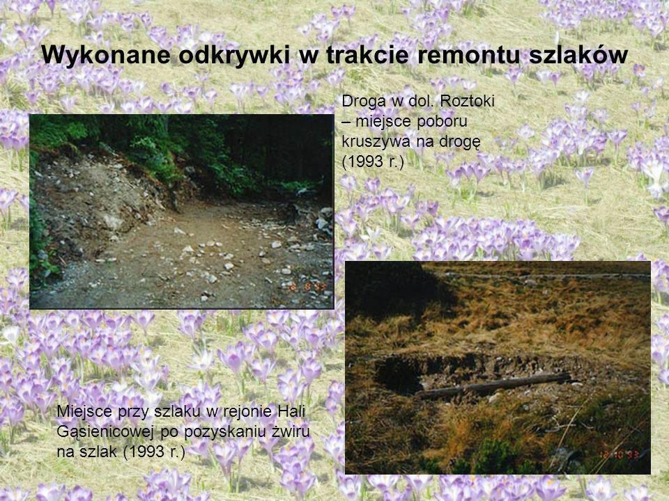Wykonane odkrywki w trakcie remontu szlaków