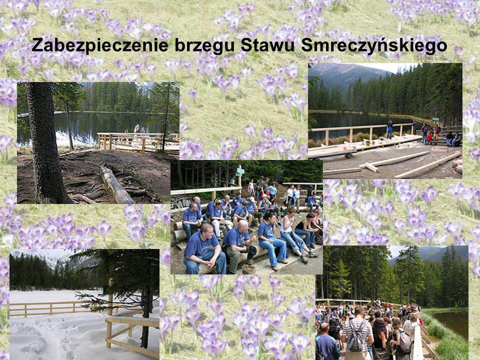 Zabezpieczenie brzegu Stawu Smreczyńskiego