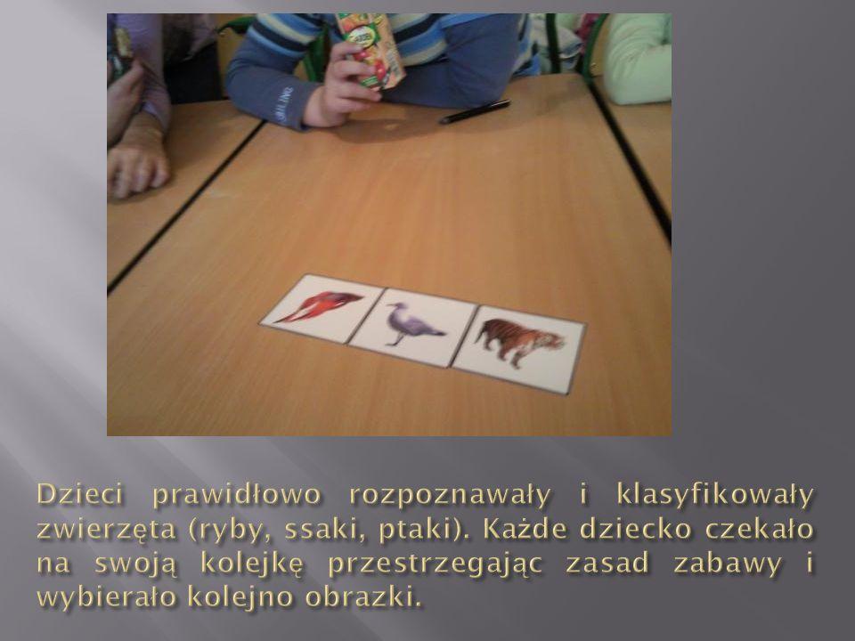 Dzieci prawidłowo rozpoznawały i klasyfikowały zwierzęta (ryby, ssaki, ptaki).