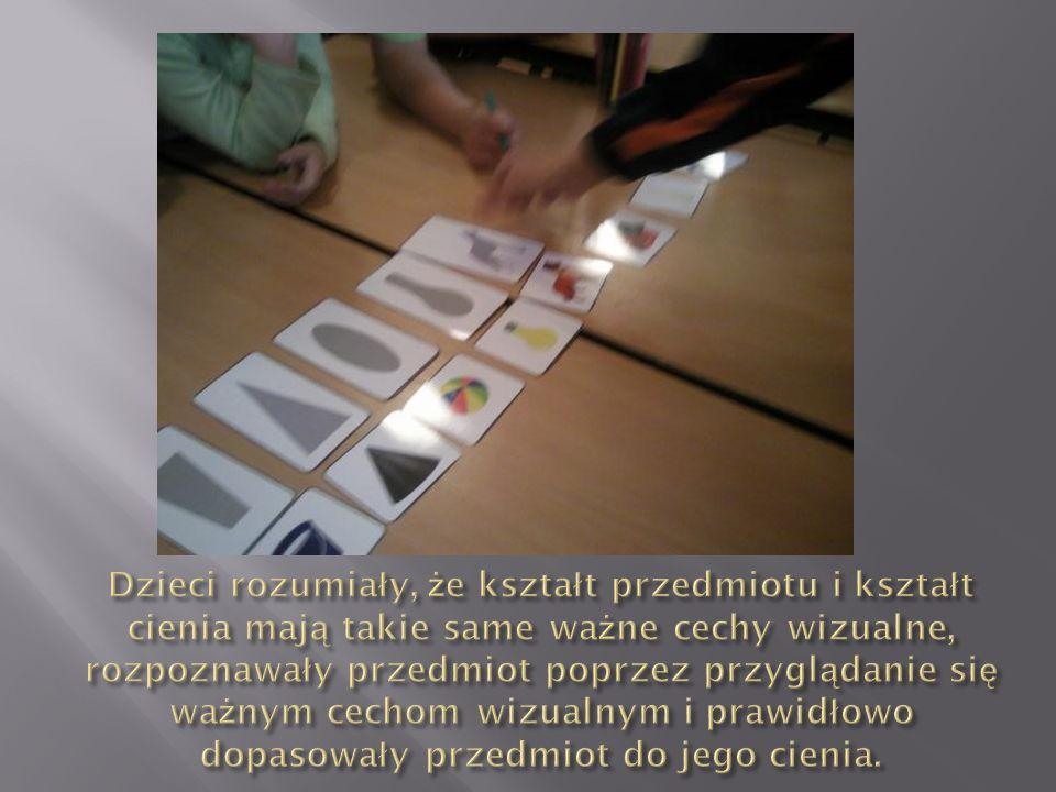 Dzieci rozumiały, że kształt przedmiotu i kształt cienia mają takie same ważne cechy wizualne, rozpoznawały przedmiot poprzez przyglądanie się ważnym cechom wizualnym i prawidłowo dopasowały przedmiot do jego cienia.