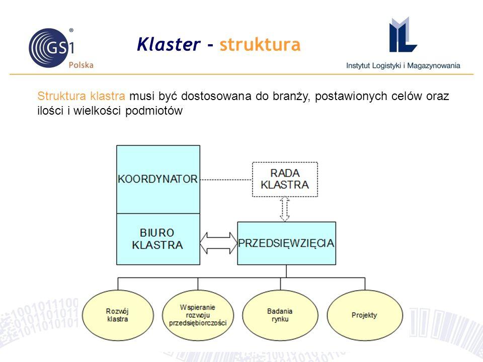 Klaster - struktura Struktura klastra musi być dostosowana do branży, postawionych celów oraz ilości i wielkości podmiotów.