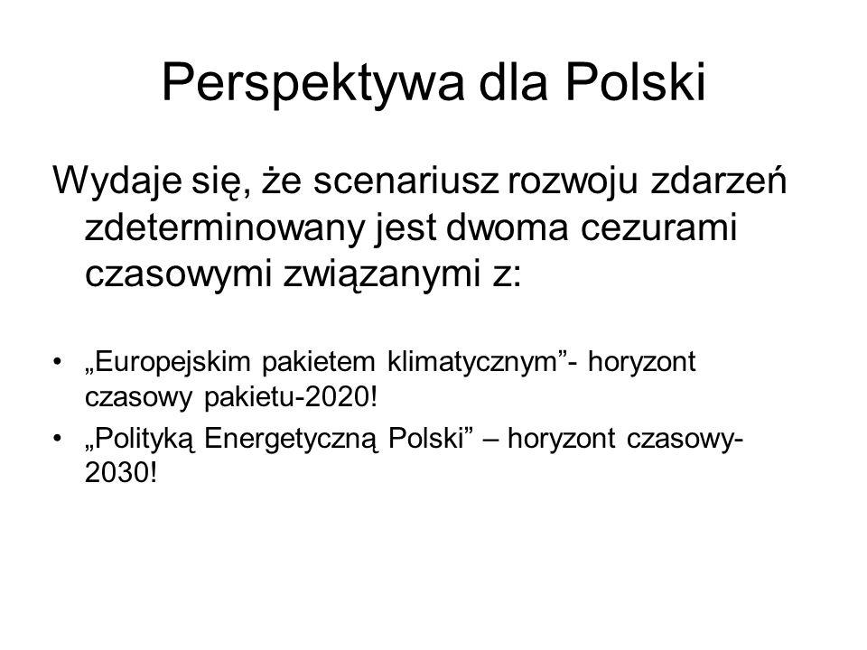 Perspektywa dla Polski