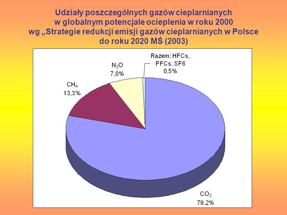"""Udziały poszczególnych gazów cieplarnianych w globalnym potencjale ocieplenia w roku 2000 wg """"Strategie redukcji emisji gazów cieplarnianych w Polsce do roku 2020 MŚ (2003)"""