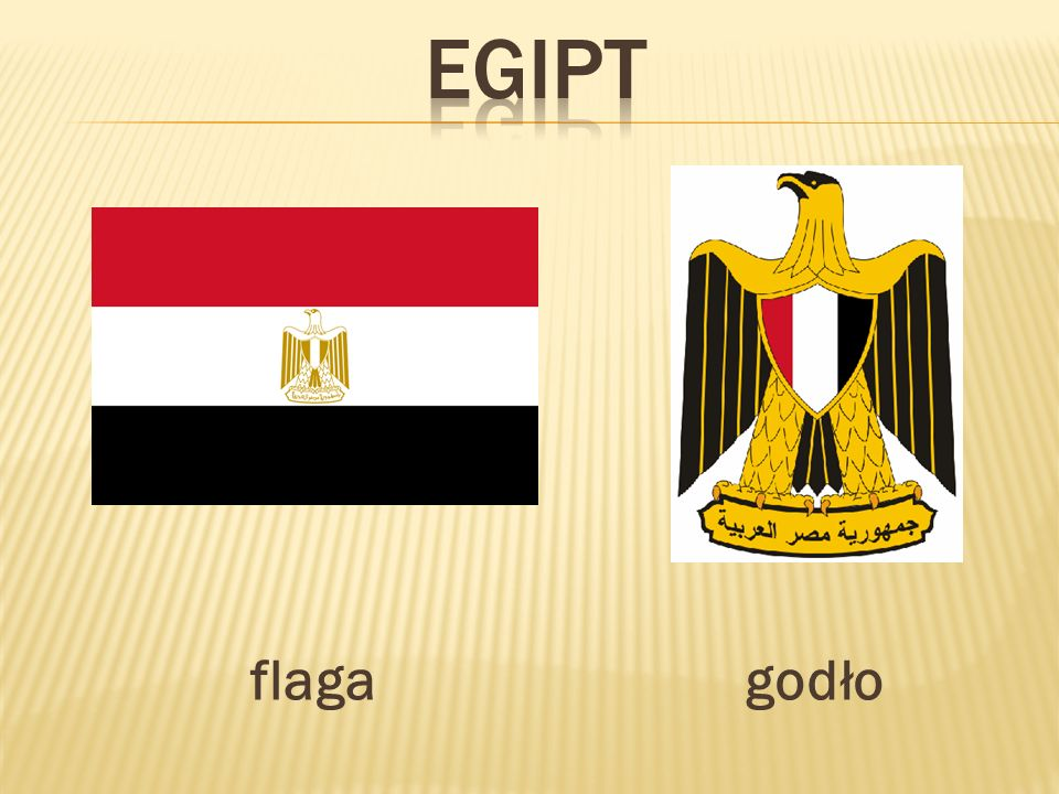 egipt flaga godło