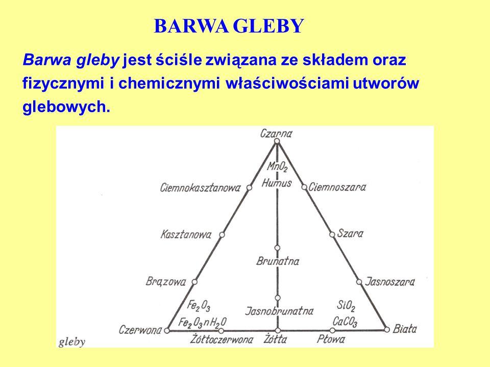 BARWA GLEBYBarwa gleby jest ściśle związana ze składem oraz fizycznymi i chemicznymi właściwościami utworów glebowych.