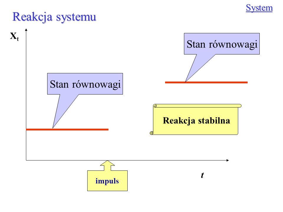 Reakcja systemu Stan równowagi Stan równowagi System Xt