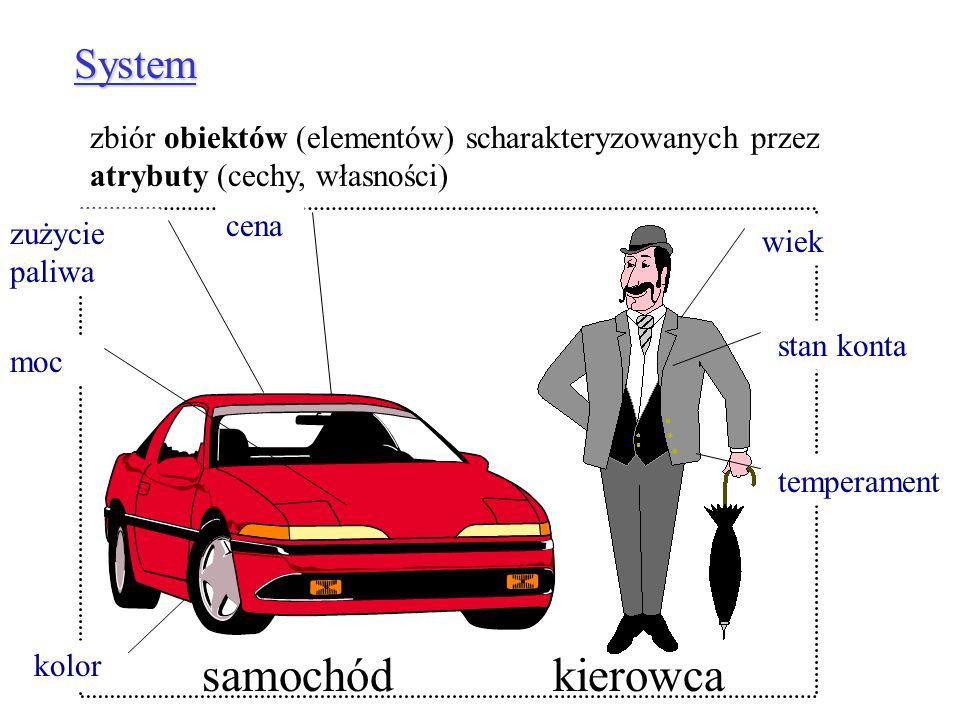 samochód kierowca System