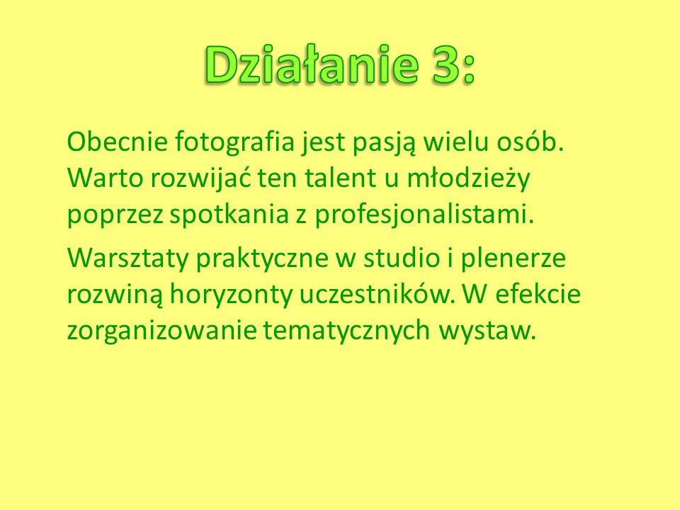 Działanie 3: