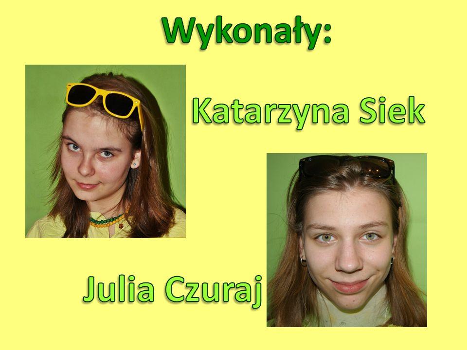 Wykonały: Katarzyna Siek Julia Czuraj