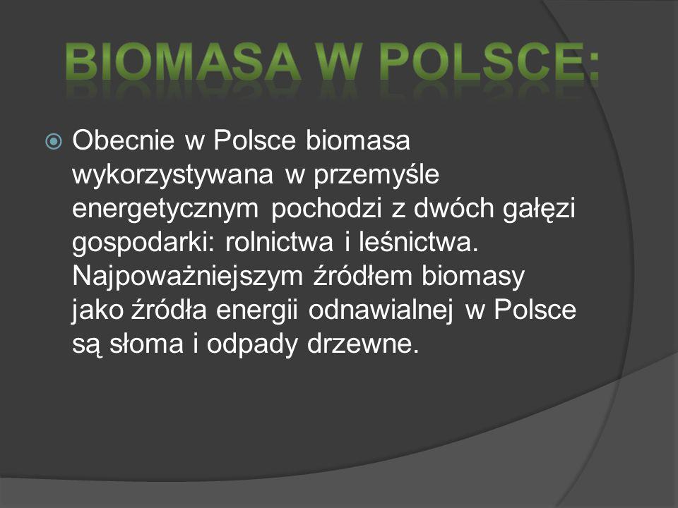 Biomasa w Polsce: