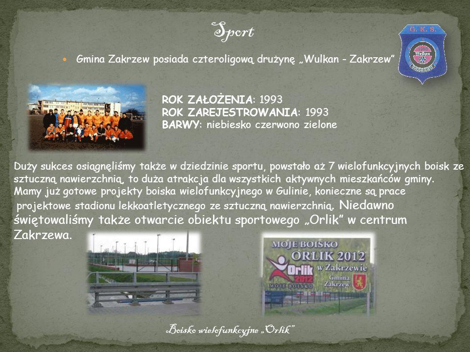 "Sport Boisko wielofunkcyjne ""Orlik"