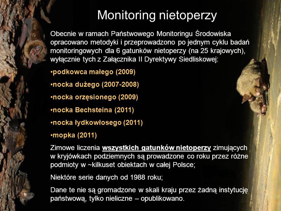 Monitoring nietoperzy