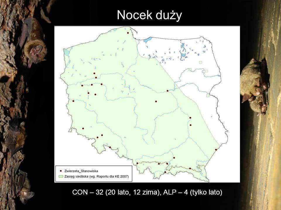 CON – 32 (20 lato, 12 zima), ALP – 4 (tylko lato)