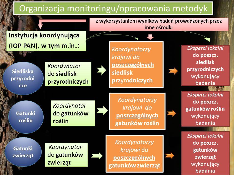 Organizacja monitoringu/opracowania metodyk