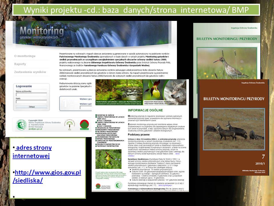 Wyniki projektu -cd.: baza danych/strona internetowa/ BMP