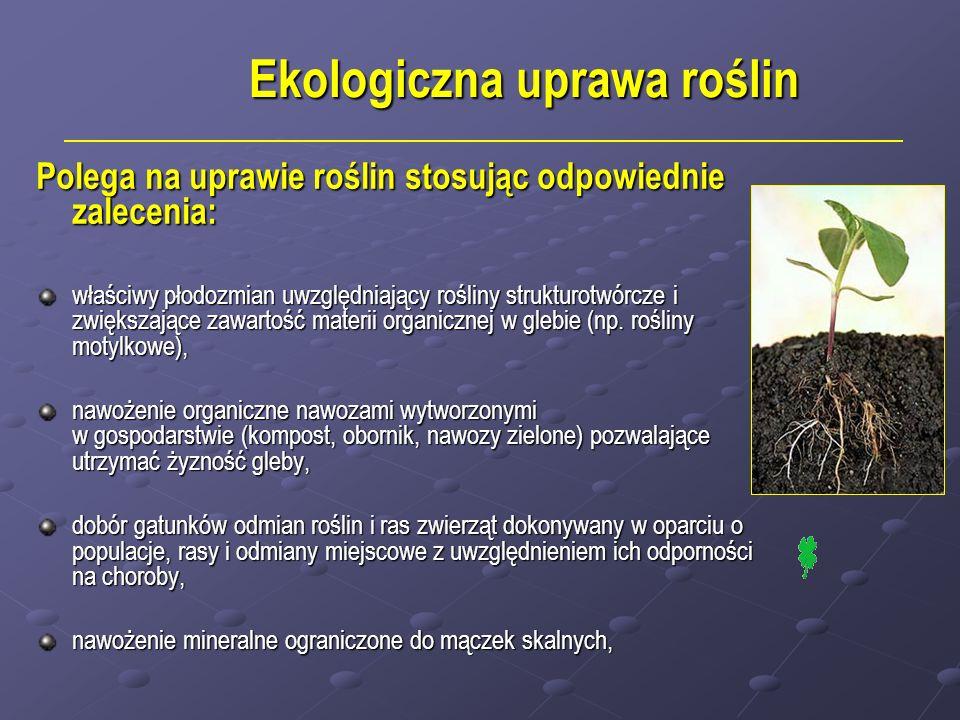 Ekologiczna uprawa roślin