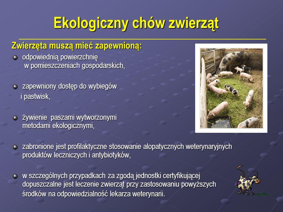 Ekologiczny chów zwierząt