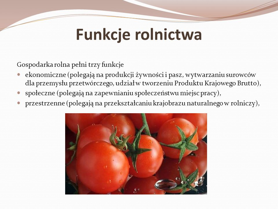 Funkcje rolnictwa Gospodarka rolna pełni trzy funkcje
