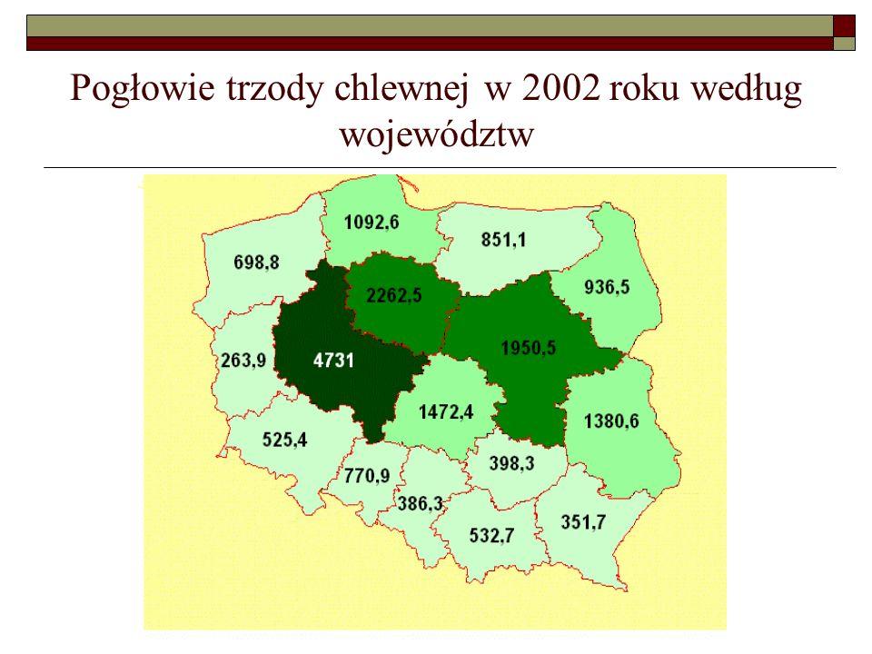 Pogłowie trzody chlewnej w 2002 roku według województw