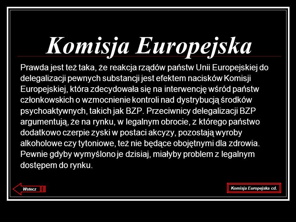 Komisja Europejska Prawda jest też taka, że reakcja rządów państw Unii Europejskiej do.