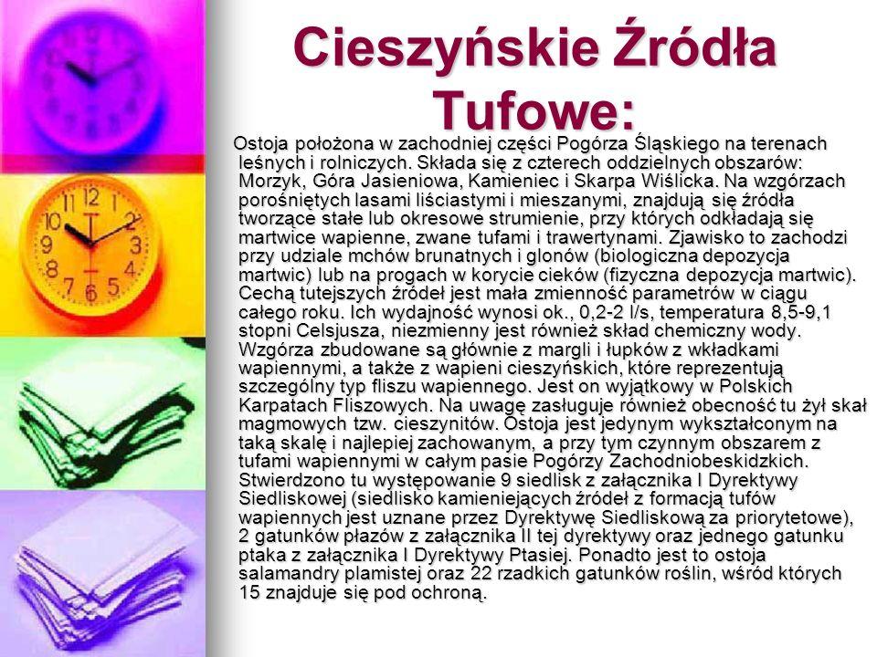 Cieszyńskie Źródła Tufowe: