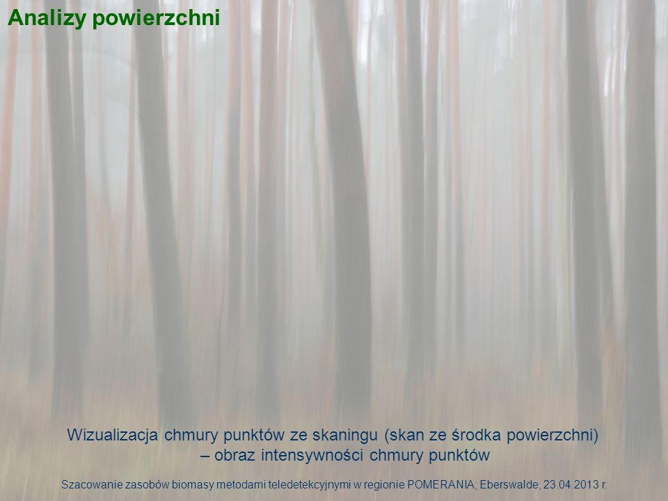 Analizy powierzchni Wizualizacja chmury punktów ze skaningu (skan ze środka powierzchni) – obraz intensywności chmury punktów.