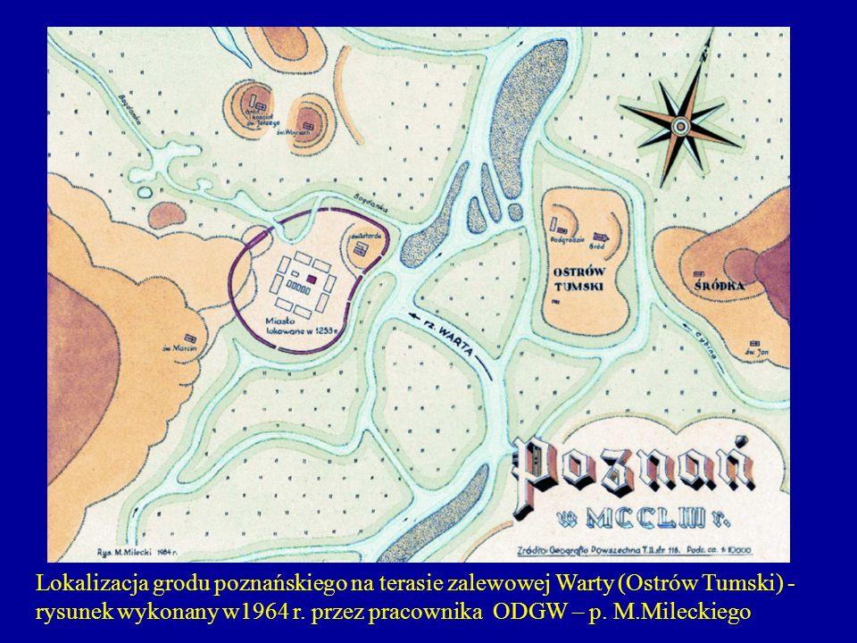 Lokalizacja grodu poznańskiego na terasie zalewowej Warty (ostrów Tumski) - rysunek wykonany w