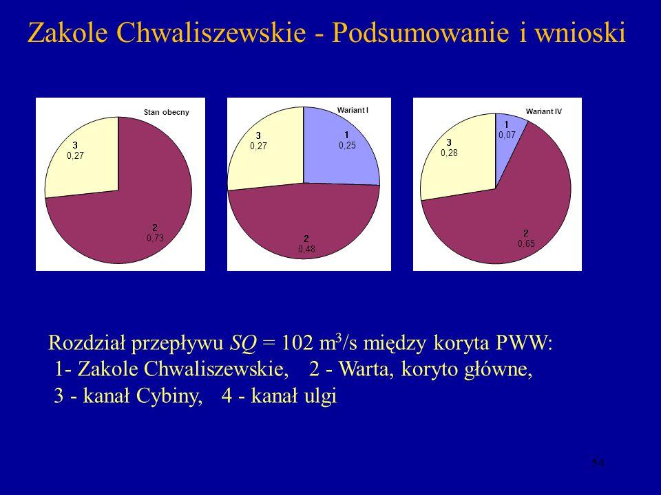 Zakole Chwaliszewskie - Podsumowanie i wnioski