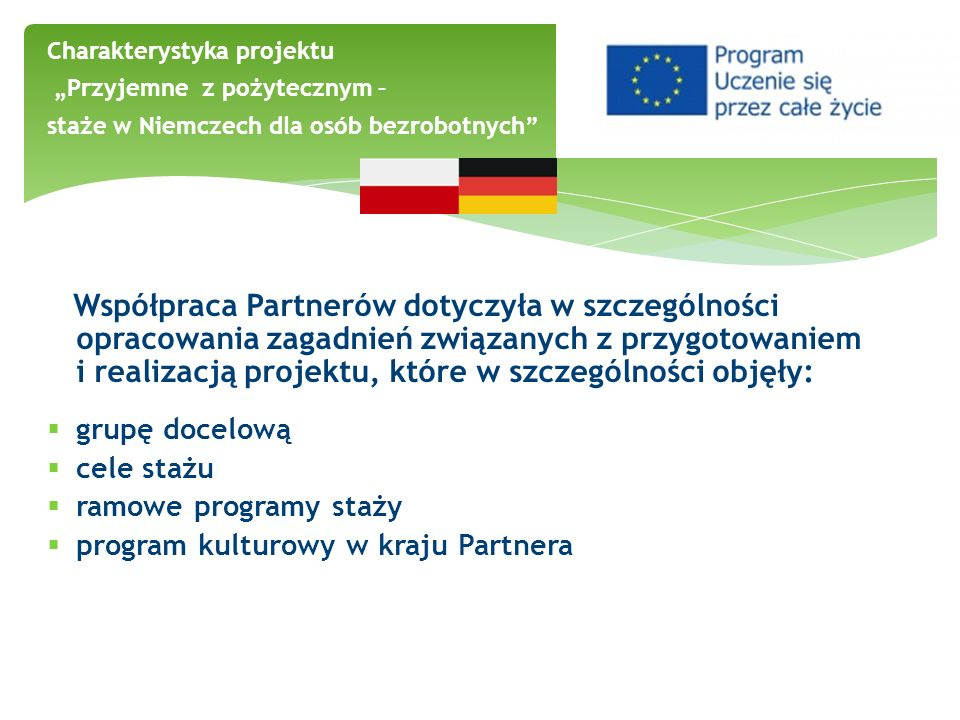 program kulturowy w kraju Partnera