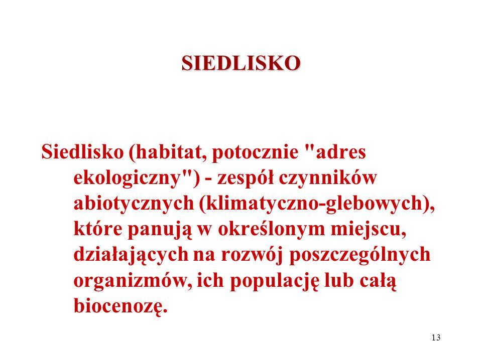 SIEDLISKO