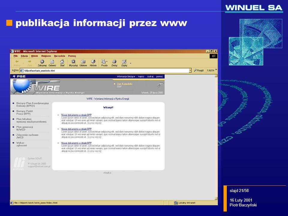 publikacja informacji przez www