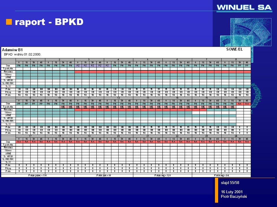 raport - BPKD