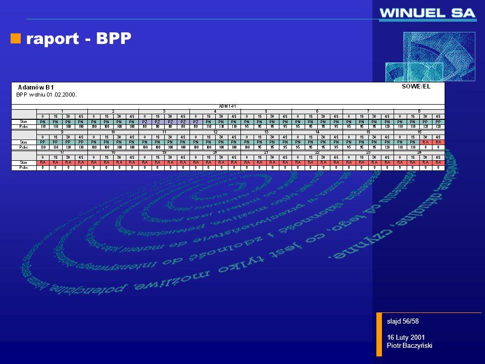 raport - BPP