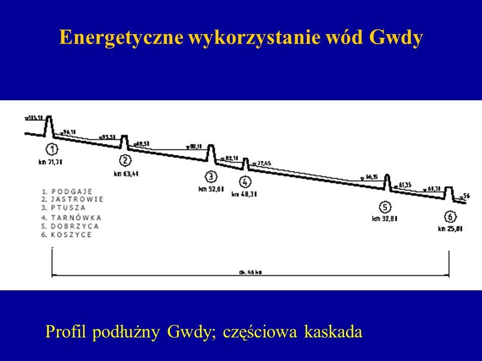 Energetyczne wykorzystanie wód Gwdy