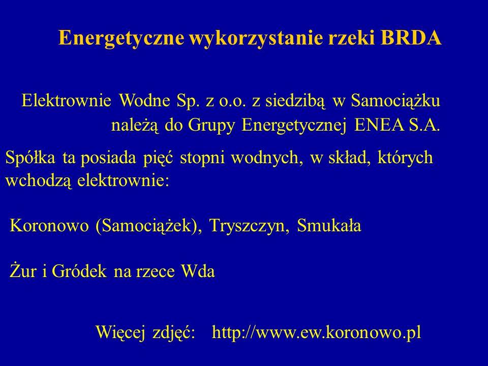 Energetyczne wykorzystanie rzeki BRDA