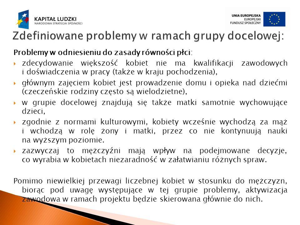 Zdefiniowane problemy w ramach grupy docelowej: