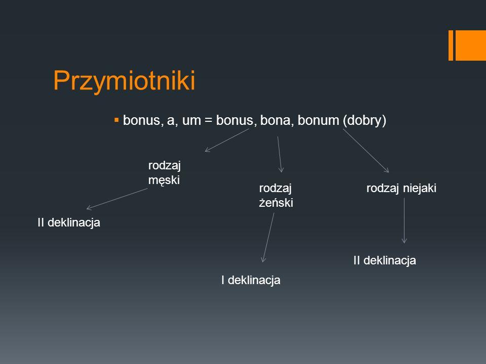 bonus, a, um = bonus, bona, bonum (dobry)