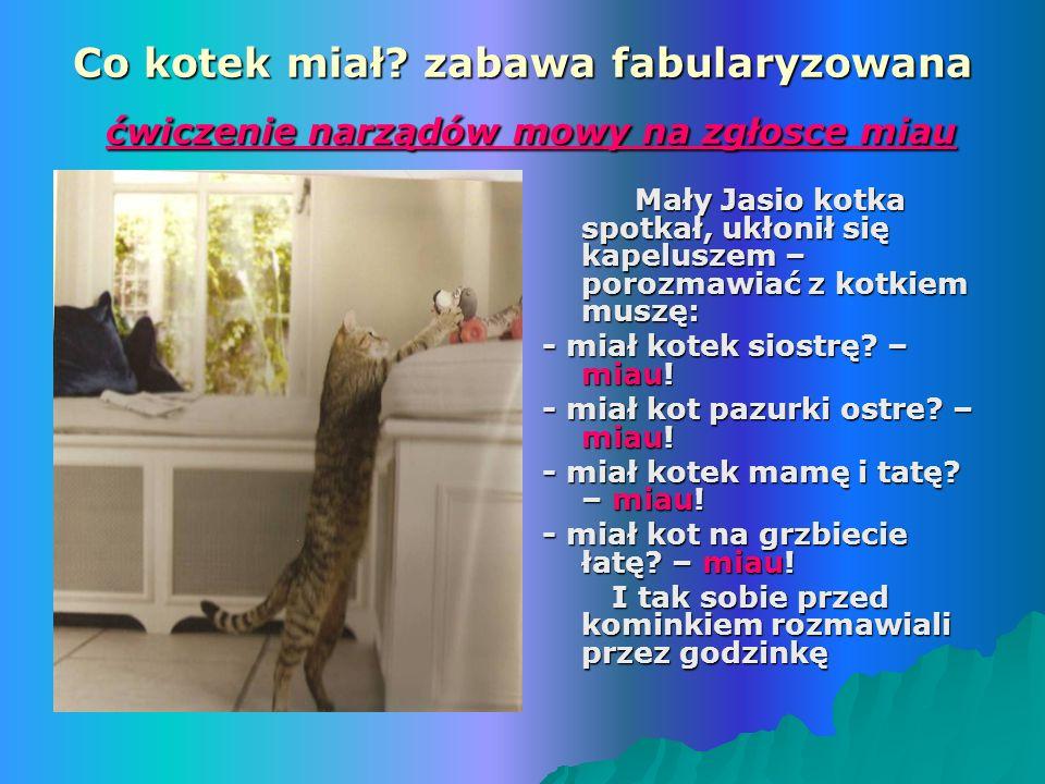 Co kotek miał zabawa fabularyzowana ćwiczenie narządów mowy na zgłosce miau