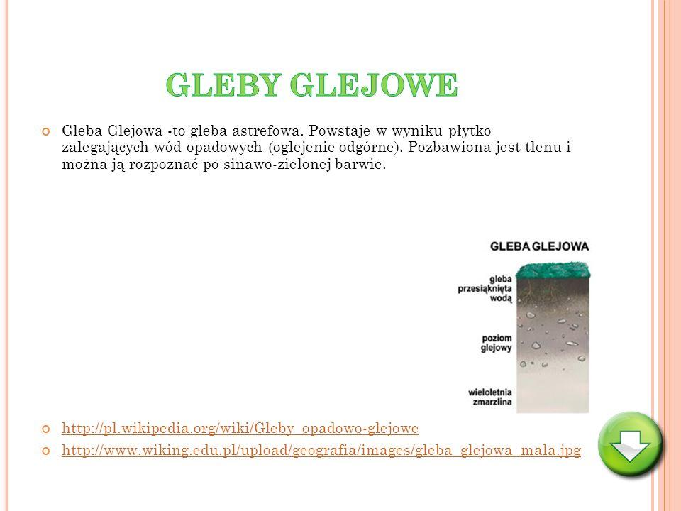 GLEBY GLEJOWE
