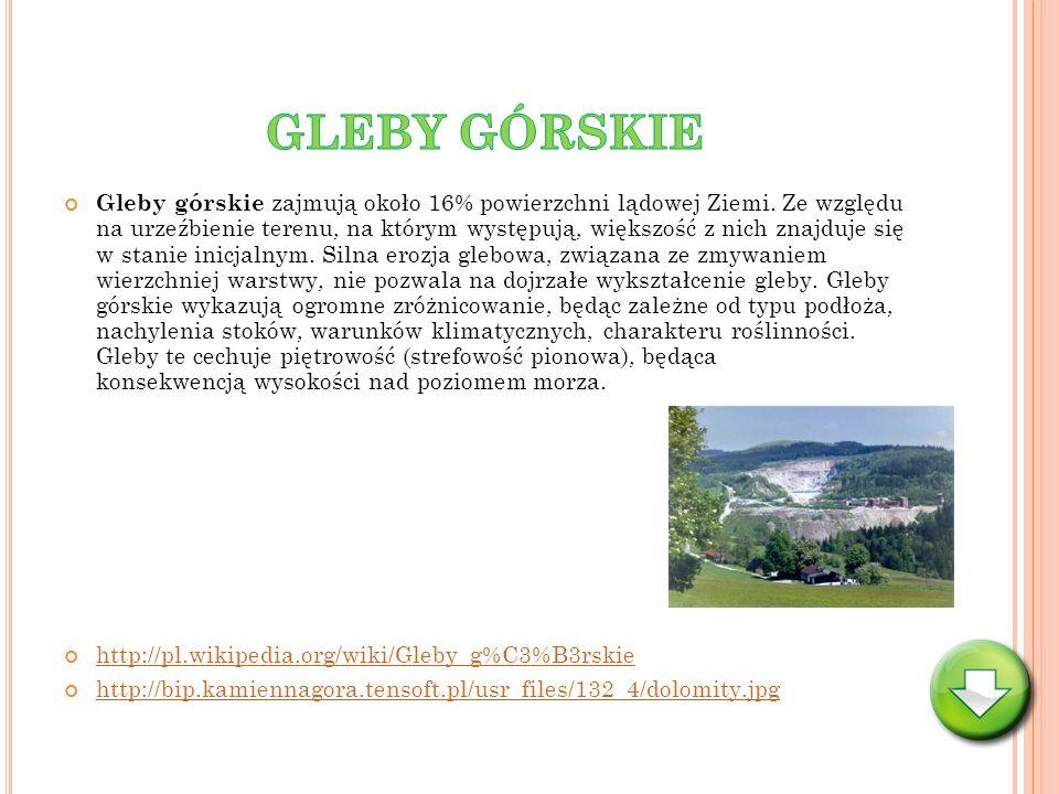 GLEBY GÓRSKIE