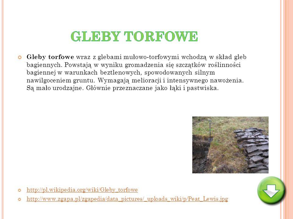 GLEBY TORFOWE