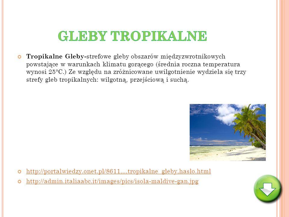 GLEBY TROPIKALNE