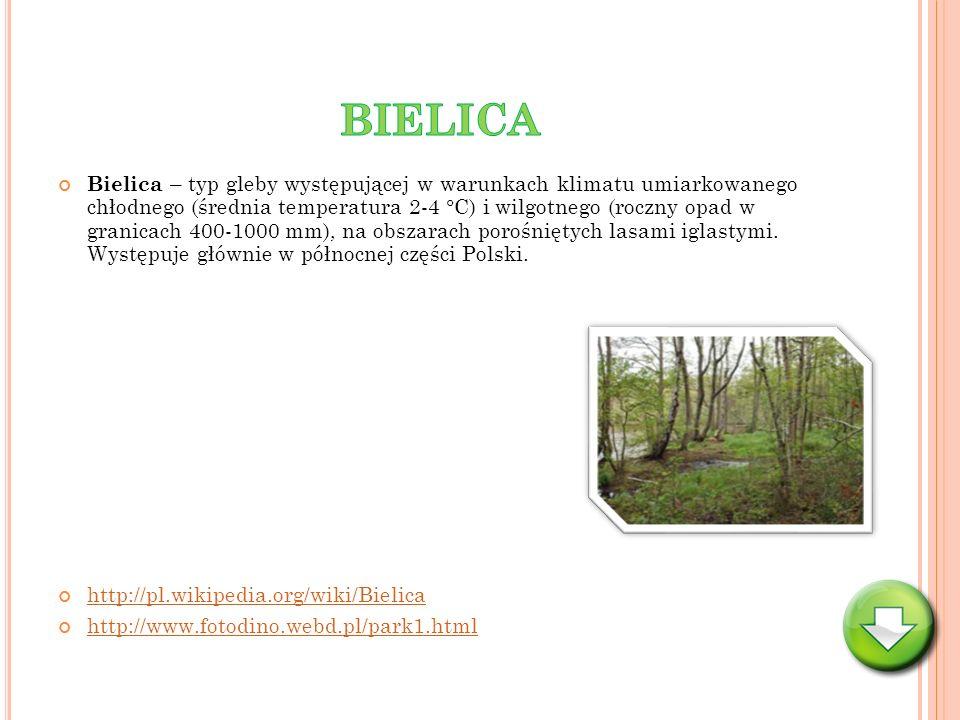BIELICA