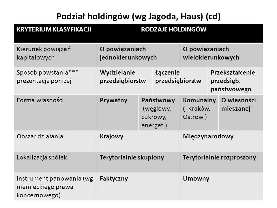 Podział holdingów (wg Jagoda, Haus) (cd)
