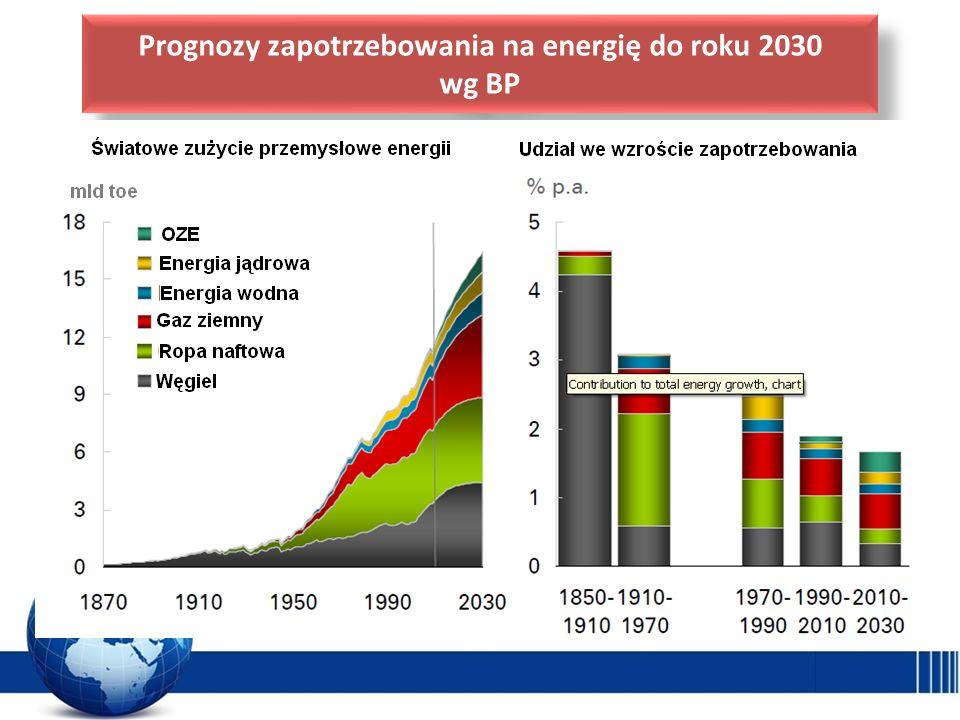 Prognozy zapotrzebowania na energię do roku 2030