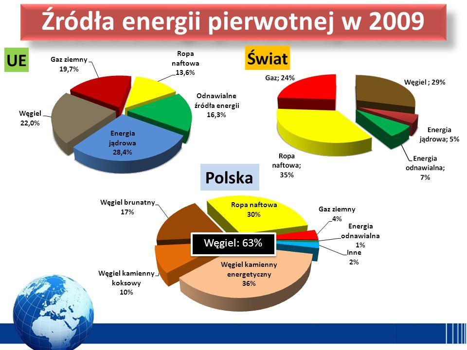 Źródła energii pierwotnej w 2009
