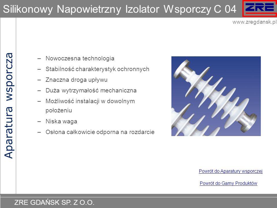 Silikonowy Napowietrzny Izolator Wsporczy C 04